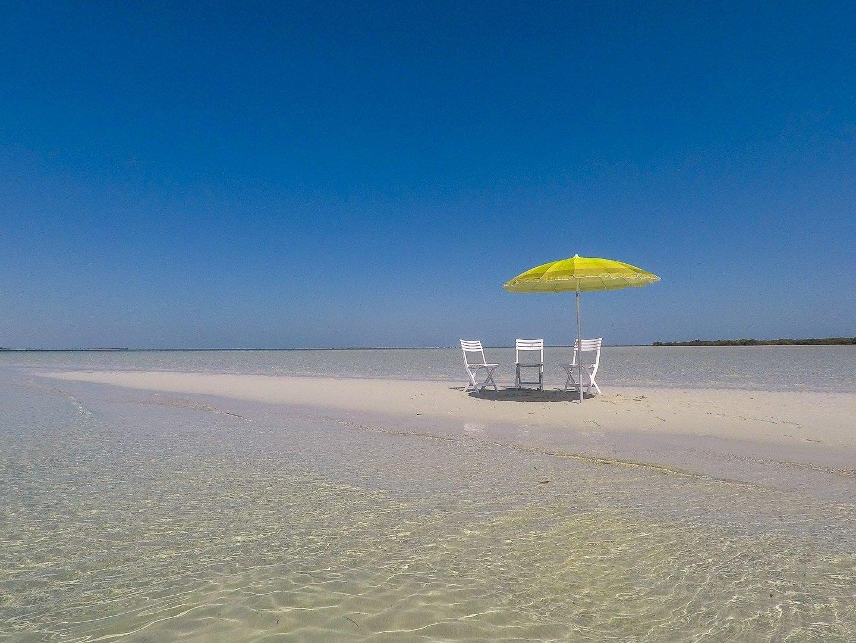 Day trip: an Island Beach Getaway in Abu Dhabi